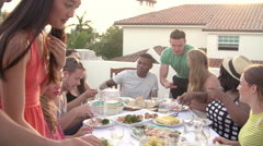 Group Of Young People Enjoying Outdoor Summer Meal Stock Footage
