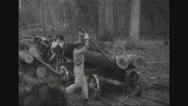 Lumberjack unloading wooden logs from bullock cart Stock Footage