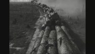 Cargo train carrying wooden logs in forest Stock Footage