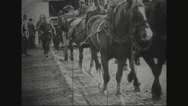 Military soldiers walking with horse cart on road Stock Footage