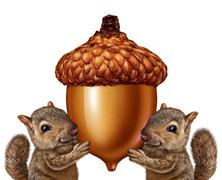 squirrels holding an acorn - stock illustration