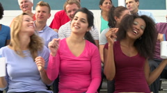Audience Dancing At Outdoor Concert Performance - stock footage