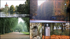 Ecology green nature trees  malmo sweden multi screen collage Stock Footage