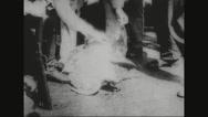 Sailors examining dead turtle Stock Footage