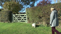 Woman walking small dog in English country park/field - 2 Stock Footage