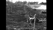 Military soldiers crawling through barbed wire Stock Footage