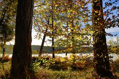 hdr capture of an autumnal landscape in bavaria - stock photo
