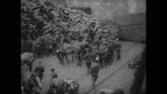 Military soldiers with horse Stock Footage