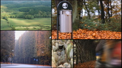 Green peace Ecology green nature trees  malmo sweden multi screen collage Stock Footage