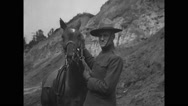 Military soldier stroking a horse Stock Footage