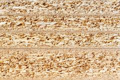 particle board cross section texture - stock photo