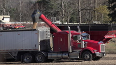 Loading Legumes from Hopper to Transport Truck Stock Footage