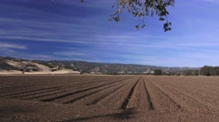 Drought Capay Valley, farmers view Stock Footage