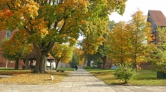 Frombork town, Poland. Square next to the cathedral at fall (autumn) - stock footage