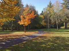 public park in a fall season. - stock photo