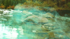 Poisoning poison stream streams Stock Footage