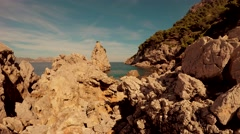 Wonderful ecological nature background Stock Footage