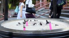 Incense cauldron at Japanese temple in Kawagoe, Saitama Prefecture, Japan Stock Footage