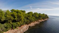 Aerial view. flying over coastline trees. green nature seascape Stock Footage