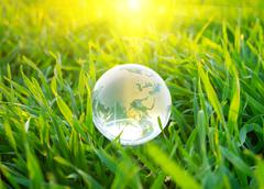 earth globe in the grass - stock photo