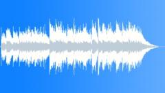 Silent Acoustic Night - Short Version - stock music