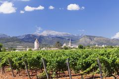 windmill and church, vineyards, binissalem, serra de tramuntana, unesco world - stock photo