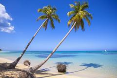 El portillo beach, las terrenas, samana peninsula, dominican republic, west i Kuvituskuvat