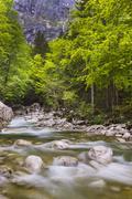 bohinj river in the bohinj basin, triglav national park, julian alps, sloveni - stock photo