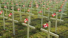 Memorial display of crosses and flags Stock Footage