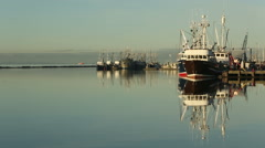 Steveston Harbor, Calm Morning, Richmond, BC Stock Footage