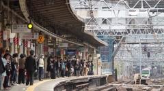 Tokyo Metro Train Time Lapse - stock footage