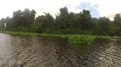 Warao Canoe in Orinoco Delta Stock Footage