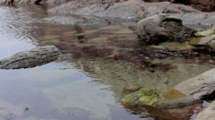 Large rock-pool (2) Stock Footage