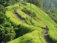 People walking, hiking along path above jungle in Bali NTSC Stock Footage