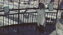 Hamburg 1970's: woman watching the cityscape from observation point Stock Footage