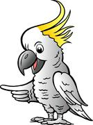 hand-drawn vector illustration of an sulphur crested cockatoo - stock illustration