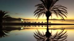 palm trees reflecting in sea water background. beautiful silhouette sunrise sky - stock footage