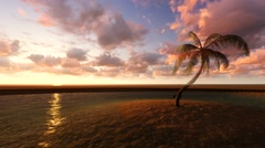 Palm tree on a small island Stock Footage