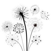 Dandelion Collection - stock illustration