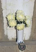 White chrysanthemums in pot over the grave Stock Photos
