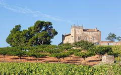 Rural estate with an olive grove in spain Stock Photos