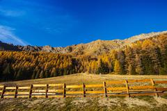 Autumn landscape in aosta valley Stock Photos