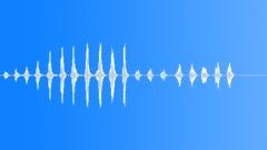 TURKEYS YELPING Sound Effect