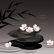 vector zen stones and cherry flowers - stock illustration