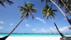 Two palms on beautiful tropical beach - stock footage