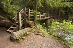 Stock Photo of Wide angle of Nature Bridge end near Marymere Falls, Olympic National Park
