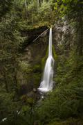 Marymere Falls, Olympic National Park Stock Photos