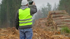 Forest Officer filmed piles of logs with tablet PC Stock Footage