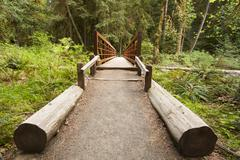 Nature Bridge end near Marymere Falls, Olympic National Park - stock photo