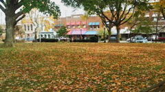Autumn Leaves in a Small Town Stock Footage